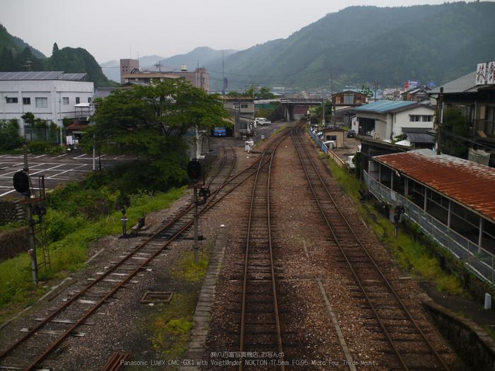 長良川鉄道_NOKTON_yaotomi_osyanpo_7.jpg