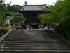 長谷寺紫陽花2012_LUMIX_12-35mm_yaotomi_2.jpg