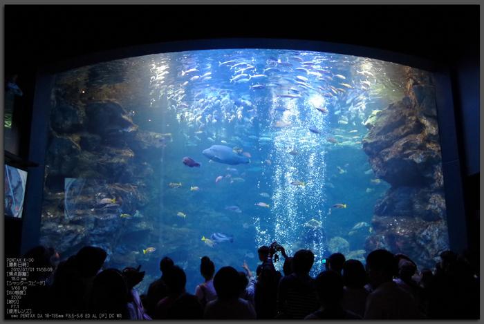 京都水族館_201206_PENTAX_K-30_yaotomi_top1.jpg
