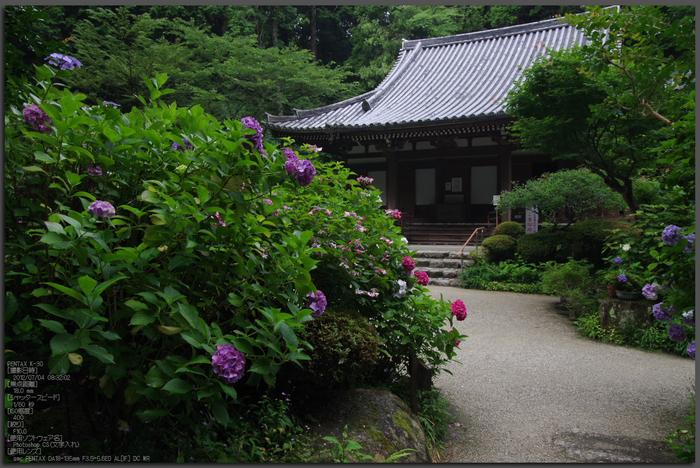 岩船寺_紫陽花_2012_yaotomi_お写ん歩_top1.jpg