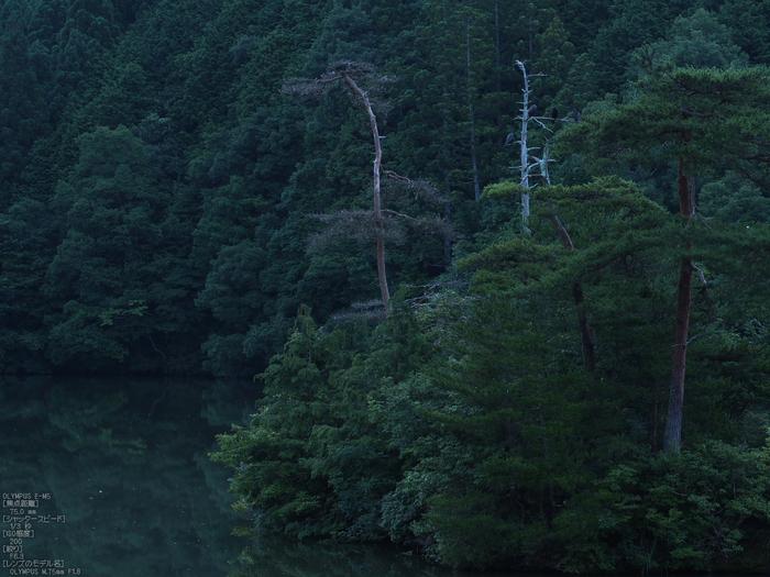 廻り田池の朝_2012_yaotomi_お写ん歩_5.jpg