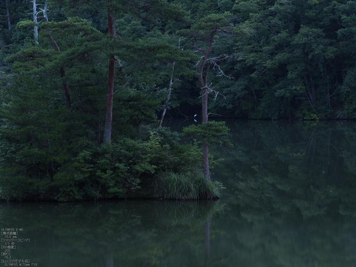 廻り田池の朝_2012_yaotomi_お写ん歩_6.jpg