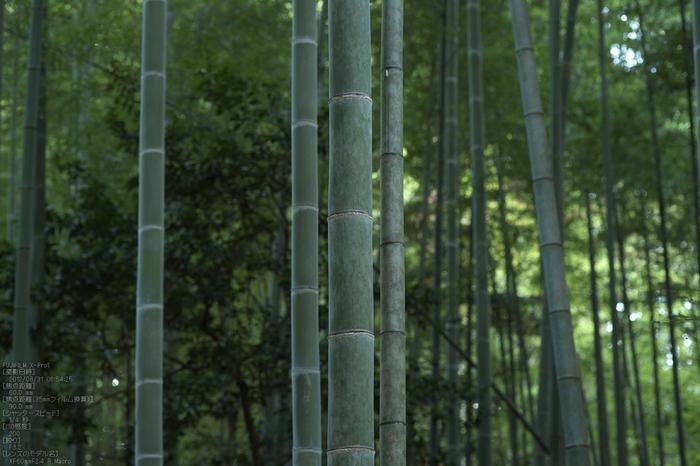 石上神社_2012_yaotomi_お写ん歩_5.jpg