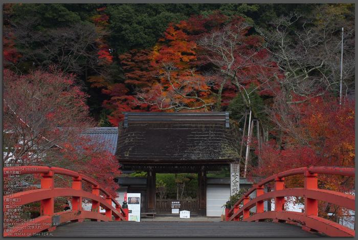 室生寺紅葉(2)_2012yaotomi_1t.jpg