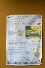 岩戸落葉神社_紅葉2012_yaotomi_12s.jpg