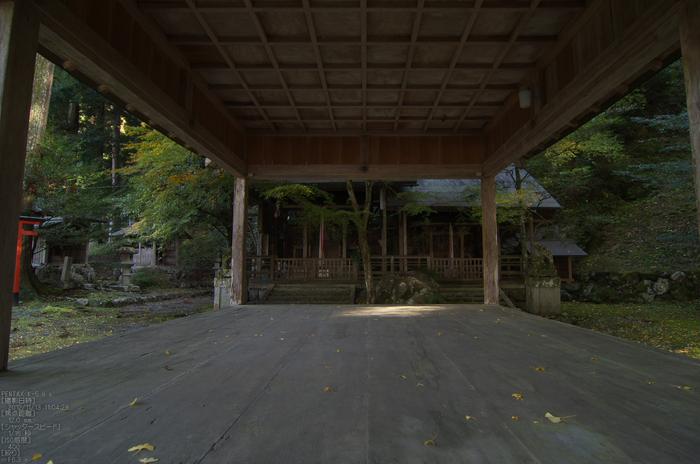岩戸落葉神社_紅葉2012_yaotomi_6s.jpg