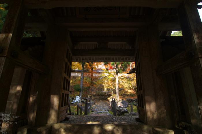 常照皇寺_紅葉2012_yaotomi_10s.jpg