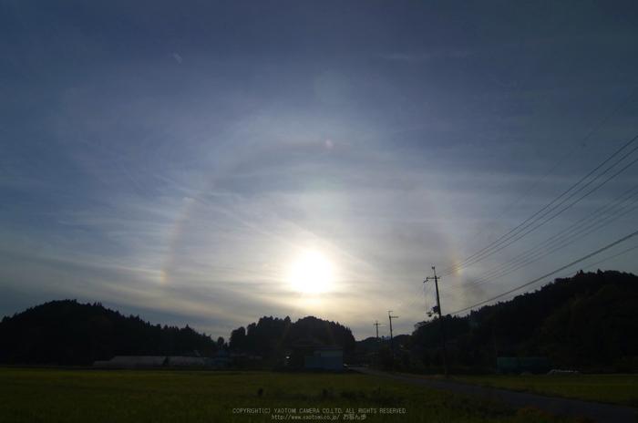 日暈(ハロ)_201211大宇陀_yaotomi_1.jpg