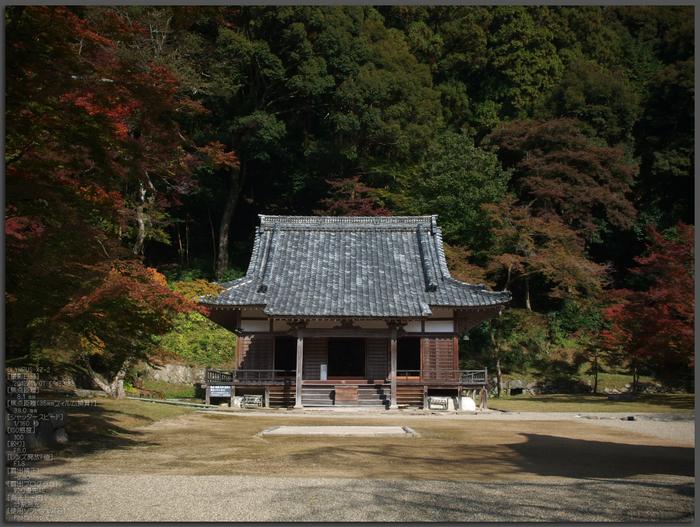 正暦寺紅葉_yaotomi2012_1t.jpg