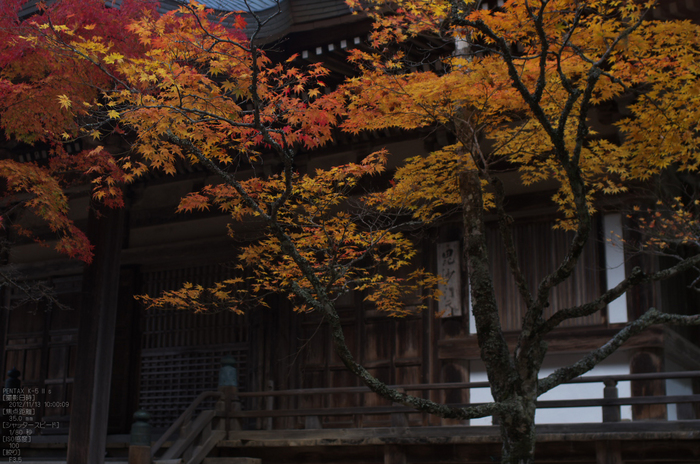神護寺_紅葉2012_yaotomi_55s.jpg