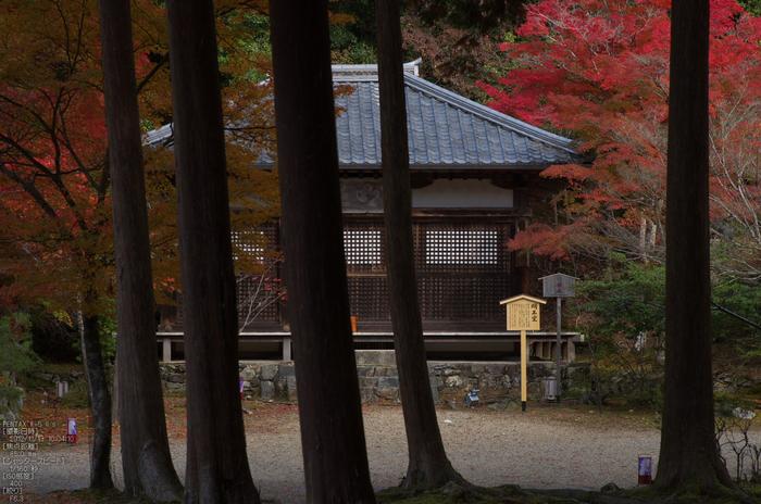 神護寺_紅葉2012_yaotomi_57s.jpg
