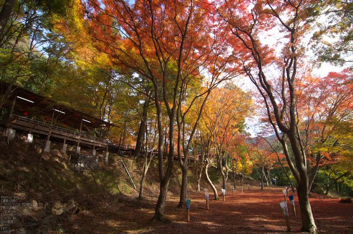 神護寺_紅葉2012_yaotomi_61s.jpg
