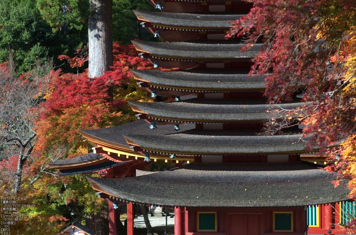 談山神社・紅葉_2012yaotomi_15.jpg