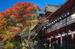 談山神社・紅葉_2012yaotomi_20.jpg