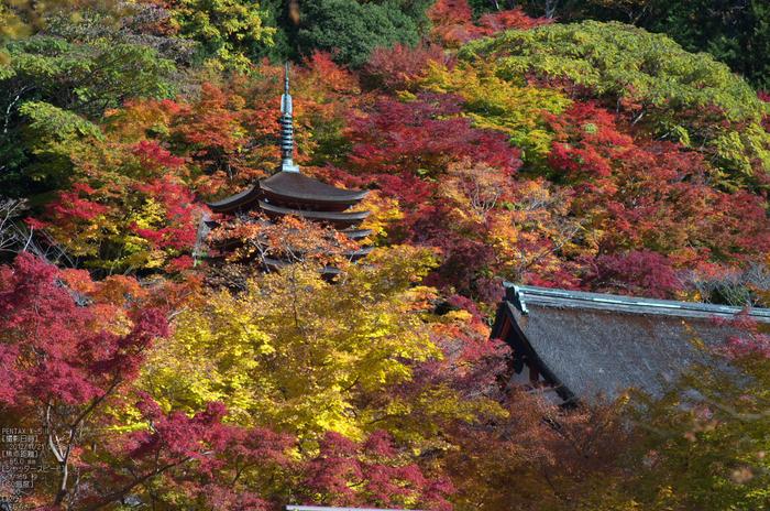 談山神社・紅葉_2012yaotomi_22.jpg