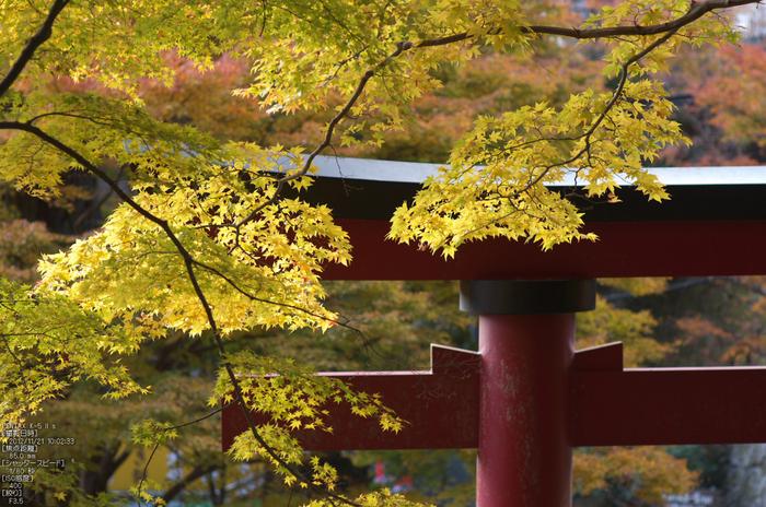 談山神社・紅葉_2012yaotomi_25.jpg