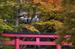 談山神社・紅葉_2012yaotomi_26.jpg