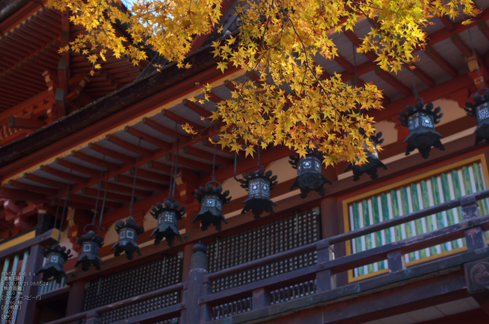 談山神社・紅葉_2012yaotomi_29.jpg