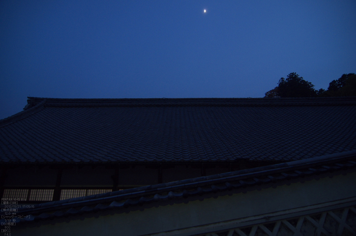 長谷寺_紅葉2012_yaotomi_33s.jpg
