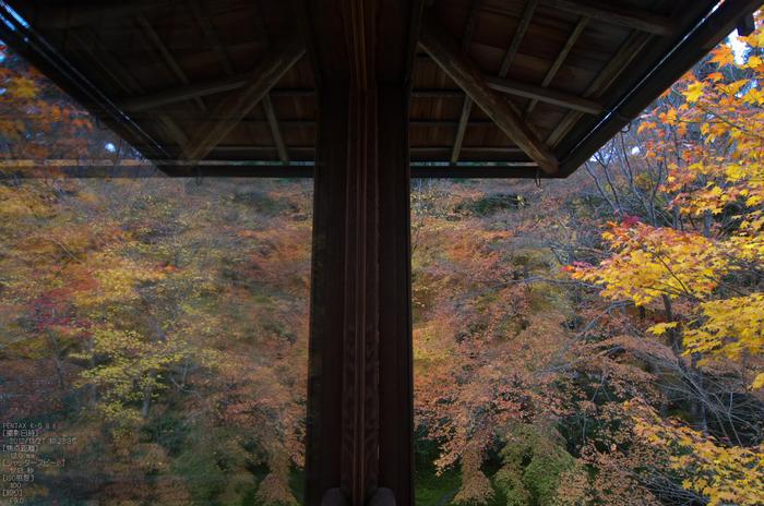 瑠璃光院紅葉_2012yaotomi_10.jpg