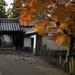 PhaseOne_P20_奈良東大寺_201212yaotomi_26.jpg