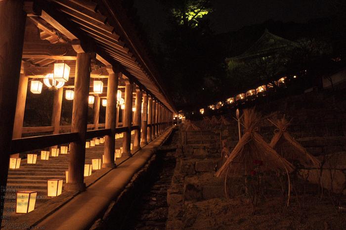 長谷寺初詣_観音万燈会_2013yaotomi_5s.jpg