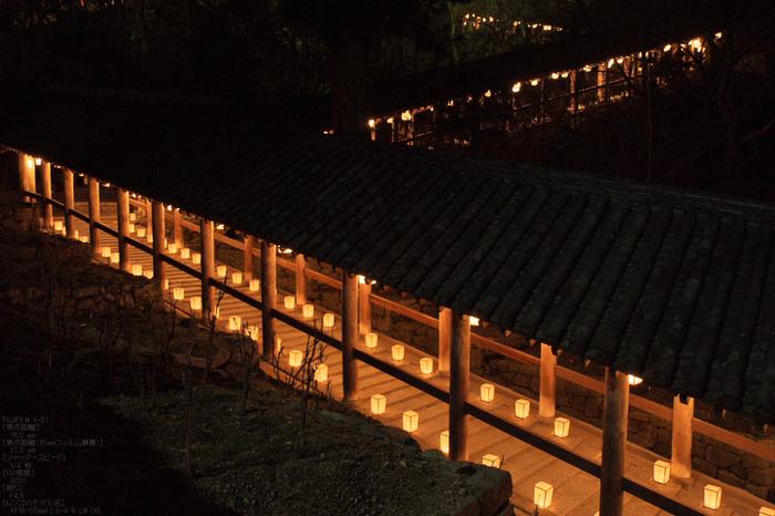 長谷寺初詣_観音万燈会_2013yaotomi_6s.jpg