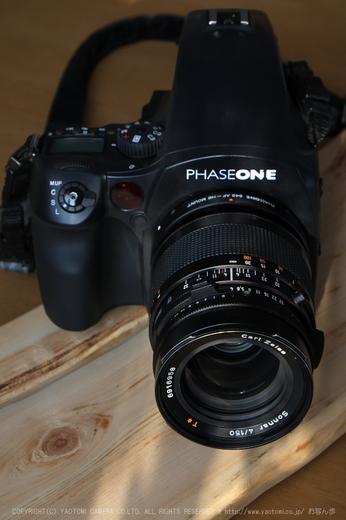 PHASEONE645DF_2013yaotomi_5a.jpg