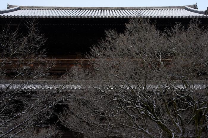 南禅寺_雪景_2013yaotomi_21s.jpg