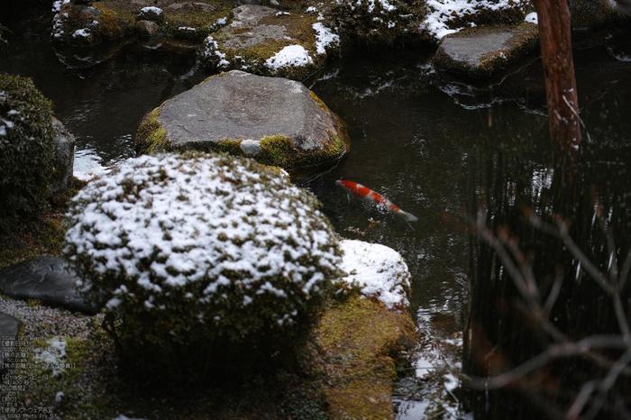 宝泉院雪景_SIGMADP3m_2013yaotomi_27s.jpg