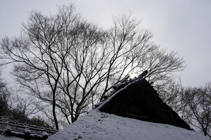 金福寺_雪景_2013yaotomi_16s.jpg