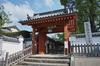 乙訓寺の牡丹_2013yaotomi_2s.jpg