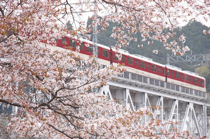 吉野山(下千本)_2013yaotomi_18s.jpg