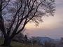 屏風岩公苑の桜_2013yaotomi_5f.jpg