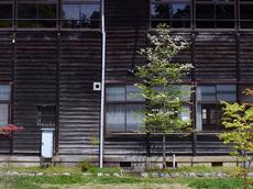 カエデの郷「ひらら」_2013yaotomi_3.jpg