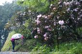写真散歩会・お写ん歩_20130511yaotomi_10s.jpg