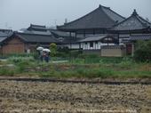 写真散歩会・お写ん歩_20130511yaotomi_113s.jpg