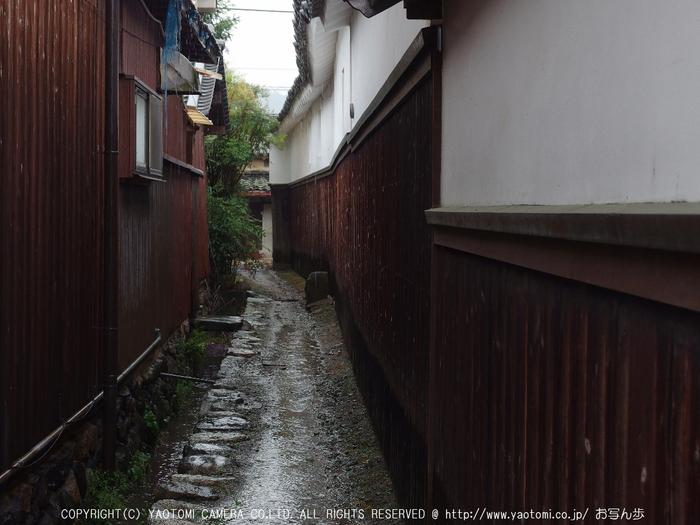 写真散歩会・お写ん歩_20130511yaotomi_121s.jpg