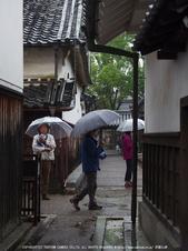 写真散歩会・お写ん歩_20130511yaotomi_125s.jpg