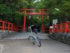 大田神社の杜若_2013yaotomi_26s.jpg