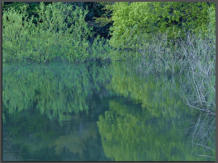 室生湖の新緑_2013yaotomi_101st.jpg