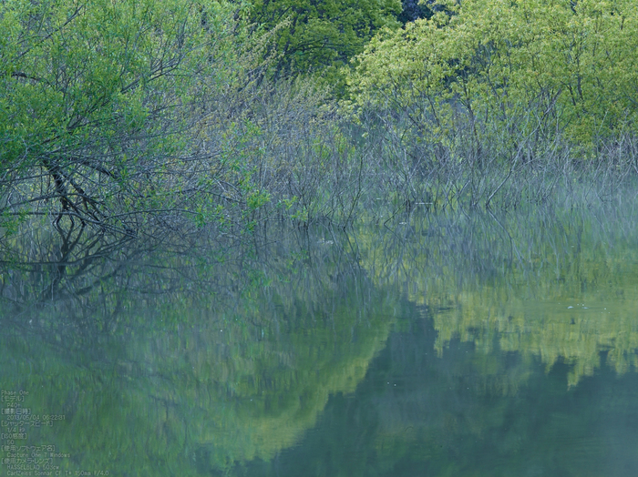 室生湖の新緑_2013yaotomi_106s.jpg
