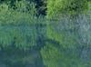 室生湖の新緑_2013yaotomi_107f.jpg