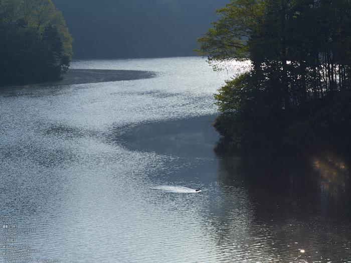 室生湖の新緑_2013yaotomi_10s.jpg