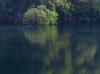 室生湖の新緑_2013yaotomi_1f.jpg