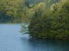室生湖の新緑_2013yaotomi_3f.jpg