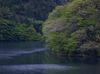 室生湖の新緑_2013yaotomi_8f.jpg