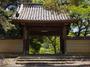 長岳寺のツツジ_2013yaotomi_2s.jpg