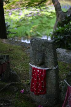 長岳寺の杜若_DP1m_2013yaotomi_25s.jpg