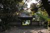 長岳寺の杜若_DP1m_2013yaotomi_3s.jpg